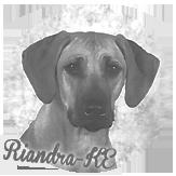 Beschreibung: http://zuritamu.de/stammhunde-Dateien/image022.png