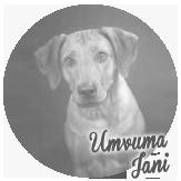 Beschreibung: http://zuritamu.de/stammhunde-Dateien/image042.png